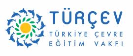 turcev_top.png